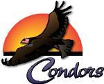 Condit logo FINAL small.jpg